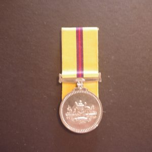 Iraq Medal (Replica)